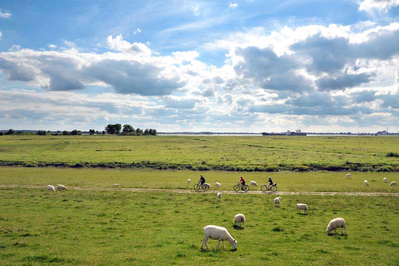 Sommertörn (c) Holstein Tourismus u. Photocompany