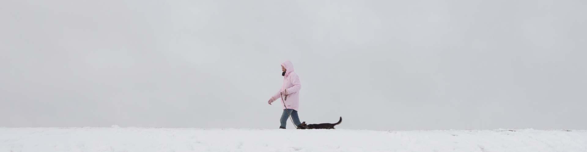 Winterspaziergang am Deich