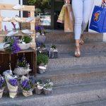 Shopping in Glückstadt (c) GDM