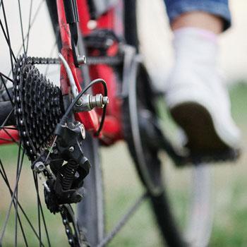 Fahrradverleih und Services (c) GDM
