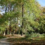 Natur-Erlebnis-Fuehrung-Stadtpark (c) Dux