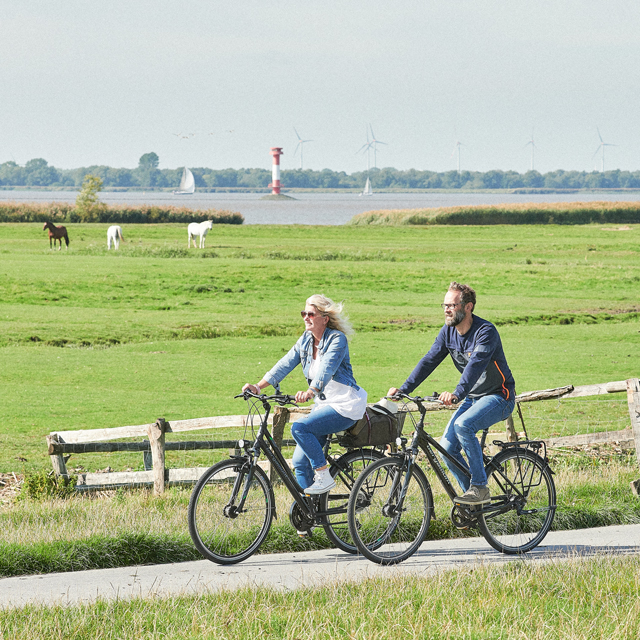 Geführte Radtouren (c) GDM, Kratz
