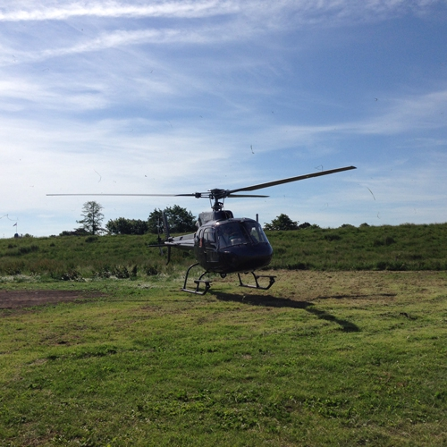 Hubschrauber-Rundfluege auf den 52. Matjeswochen